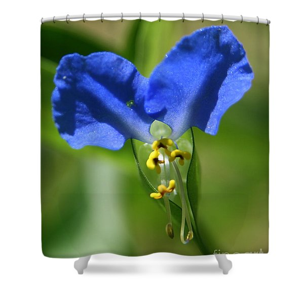 Asiatic Daydream Shower Curtain