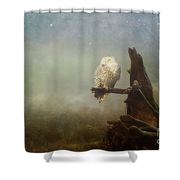 Asleep In The Misty Twilight Shower Curtain