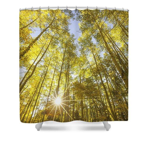 Aspen Day Dreams Shower Curtain
