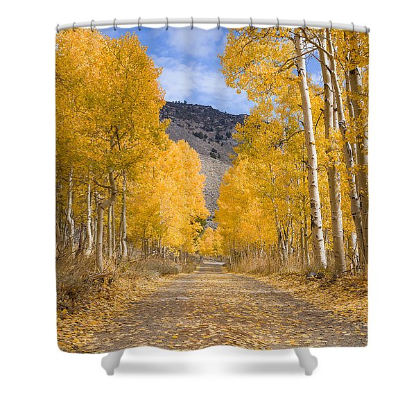 Aspen Lane Wide Crop Shower Curtain