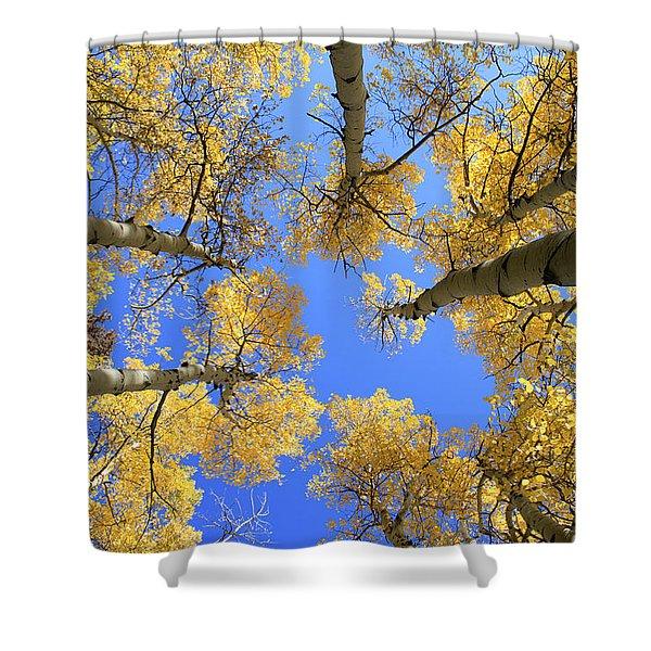 Aspens Skyward Shower Curtain