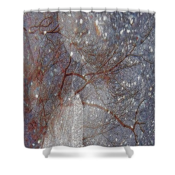 Asphalt - Portrait Of A Lady Shower Curtain
