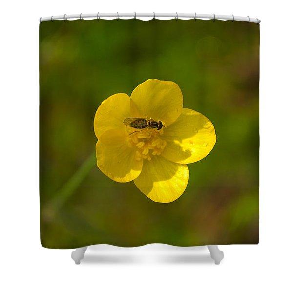 Association Shower Curtain