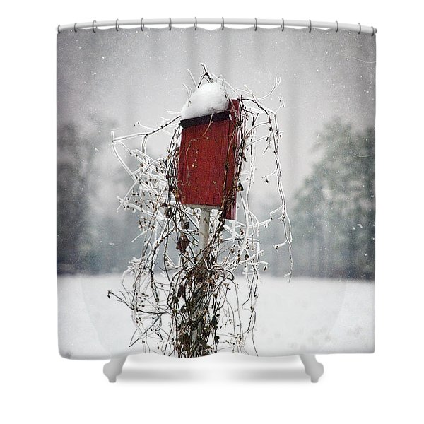 At Home In The Snow Shower Curtain