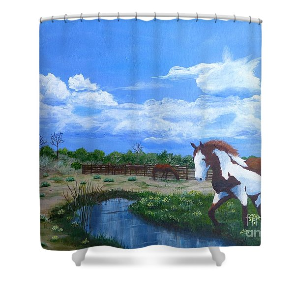 At The Ranch Shower Curtain