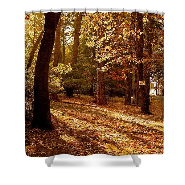 Autumn Country Lane Evening Shower Curtain