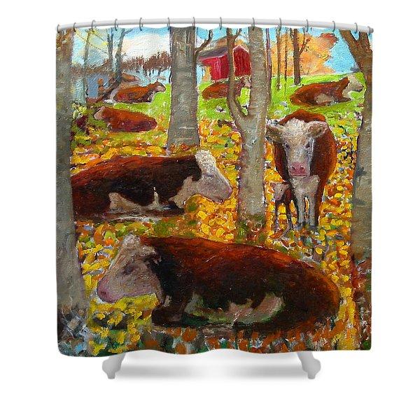 Autumn Cows Shower Curtain