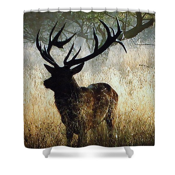 Shower Curtain featuring the photograph Autumn Forest Walk In Denmark  by Colette V Hera  Guggenheim