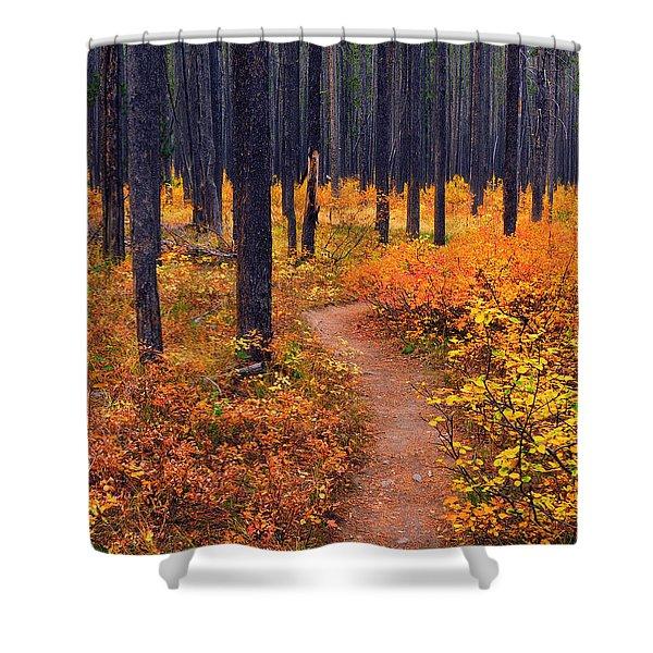Autumn In Yellowstone Shower Curtain