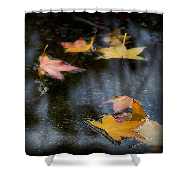 Autumn Leaves On Water Shower Curtain