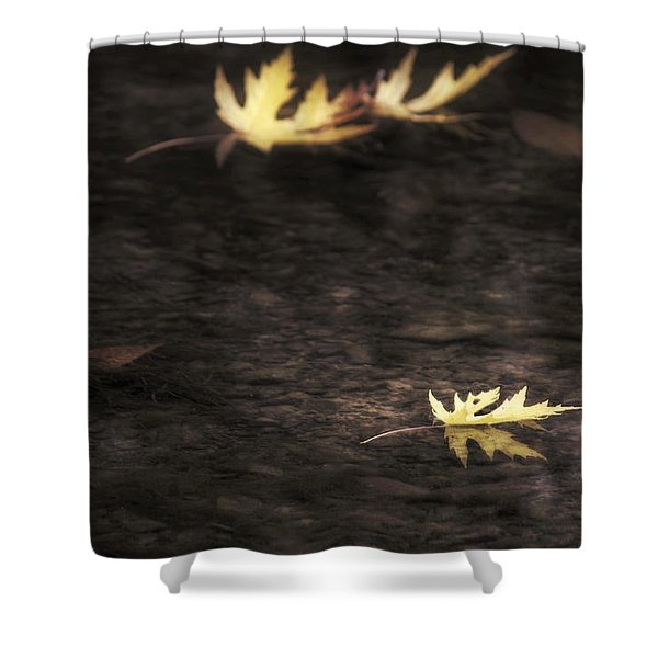 Autumn Mood - Fall - Leaves Shower Curtain