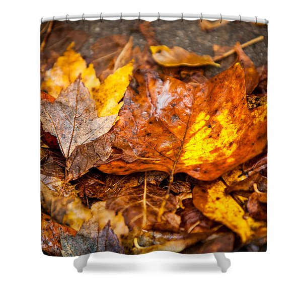 Autumn Pile Shower Curtain