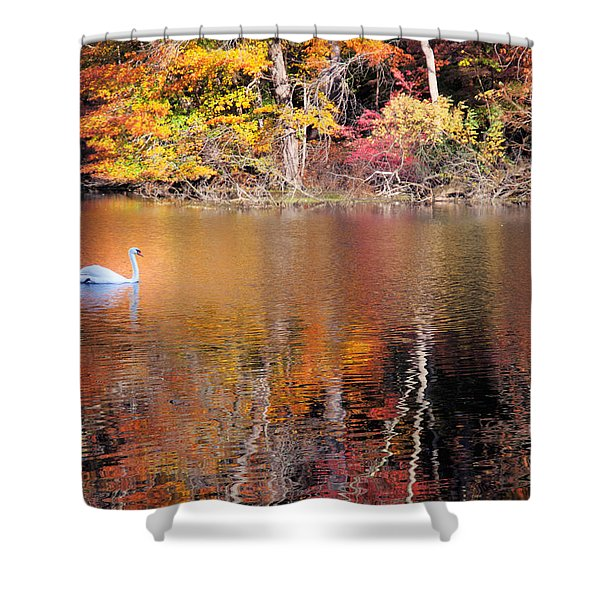 Autumn Swan Shower Curtain
