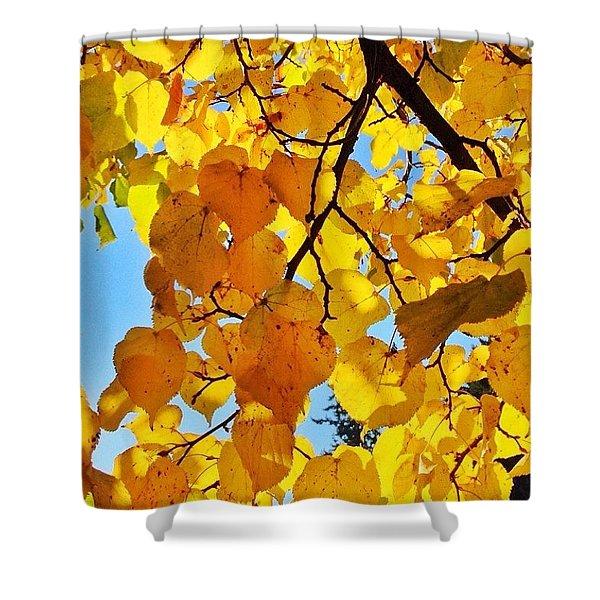 Autumn Yellows Shower Curtain