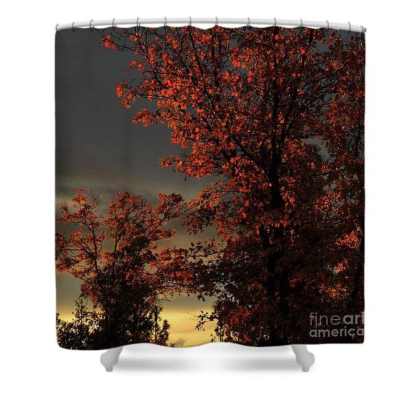 Autumn's First Light Shower Curtain