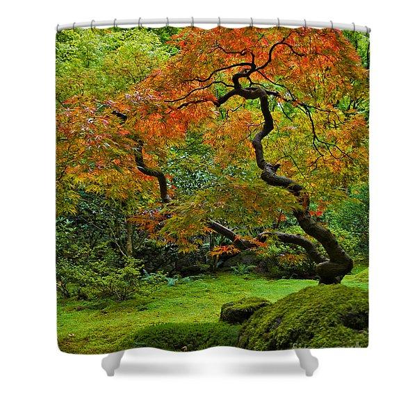Autumn's Paintbrush Shower Curtain