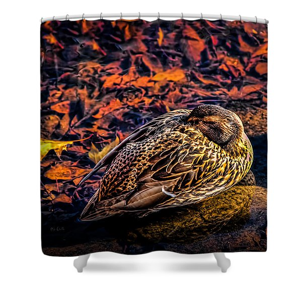 Autumns Sleepy Duck Shower Curtain