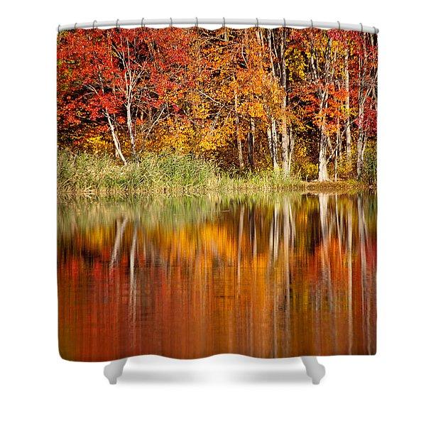 Autumns True Colors Shower Curtain