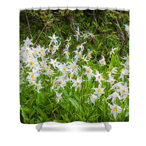 Avalanche Lily Panorama Shower Curtain