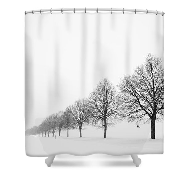 Avenue With Row Of Trees In Winter Shower Curtain