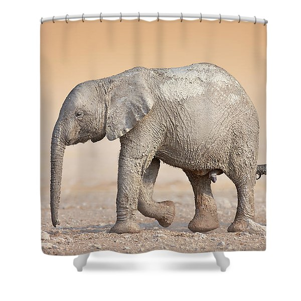 Baby Elephant  Shower Curtain