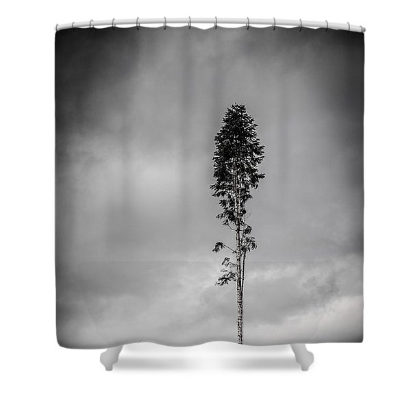 Lone Tree Landscape  Shower Curtain