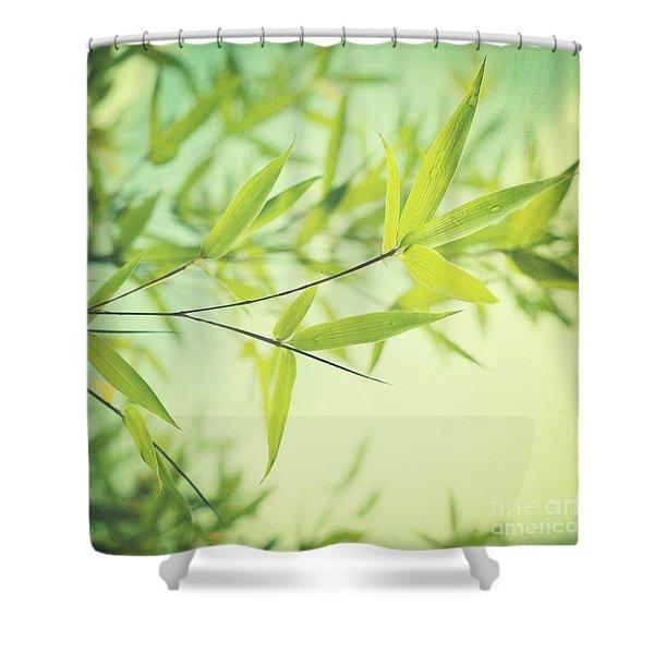 Bamboo In The Sun Shower Curtain