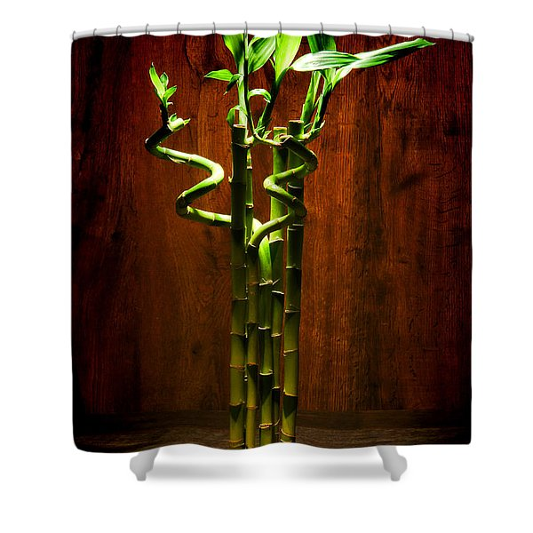 Bambooesque  Shower Curtain