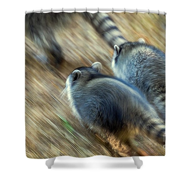 Bandits On The Run Shower Curtain