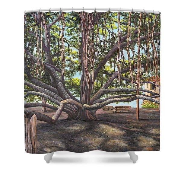 Banyan Tree Lahaina Maui Shower Curtain