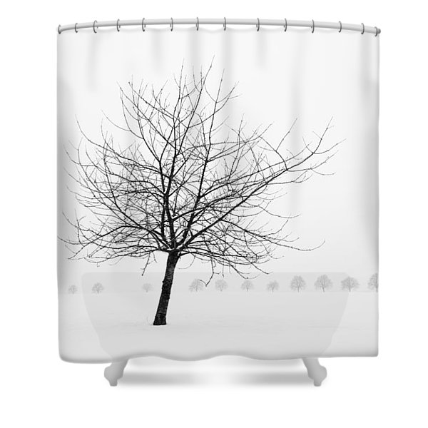 Bare Tree In Winter - Wonderful Black And White Snow Scenery Shower Curtain
