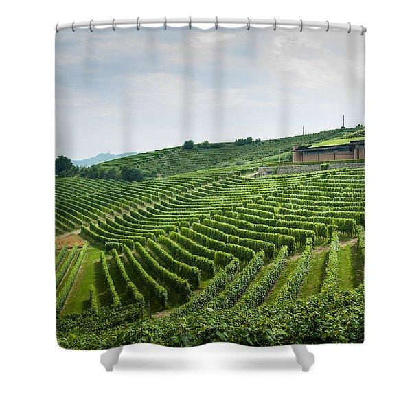 Barolo Shower Curtain