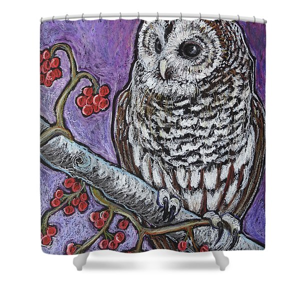 Barred Owl And Berries Shower Curtain