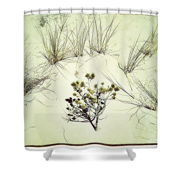 Barren Beauty Shower Curtain