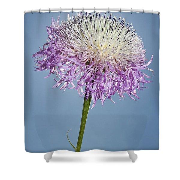 Basket-flower Blocking The Sun Shower Curtain