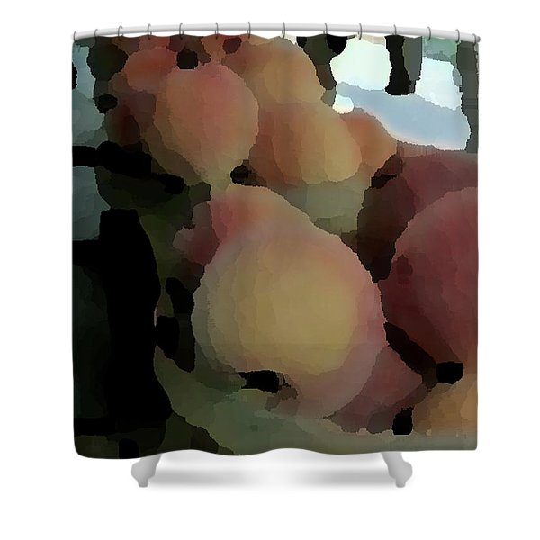 Baskets Of Peaches Shower Curtain