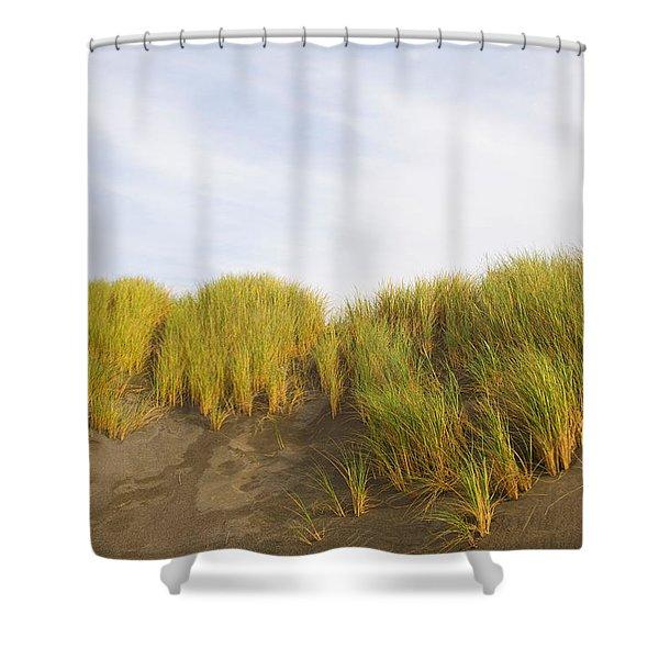 Beach Grass On Sand, Pistol River State Shower Curtain