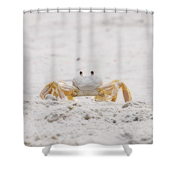 Beach Guard Shower Curtain