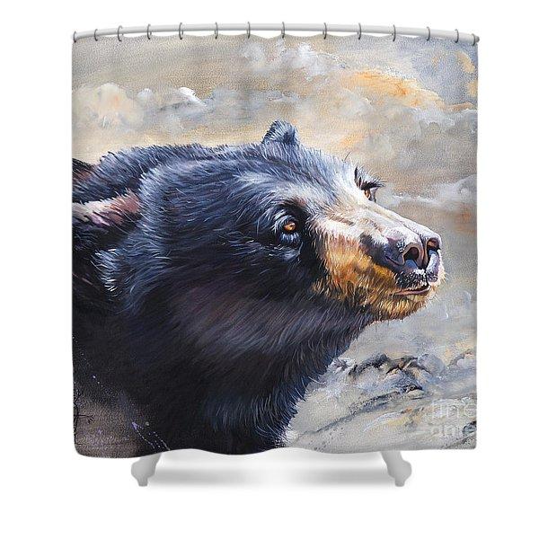 Four Winds Bear Shower Curtain