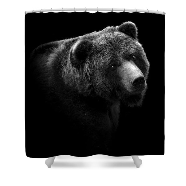 Portrait Of Bear In Black And White Shower Curtain