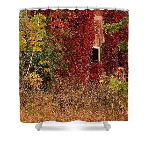 Beautiful Barn Shower Curtain