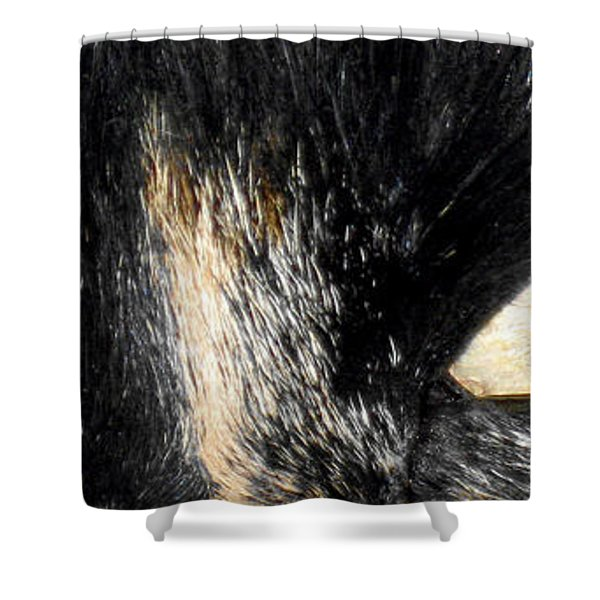 Beautiful Eyes Shower Curtain