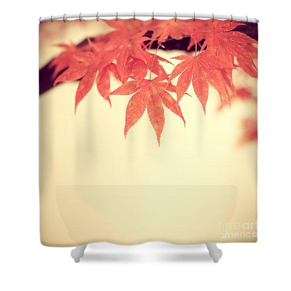 Beautiful Fall Shower Curtain