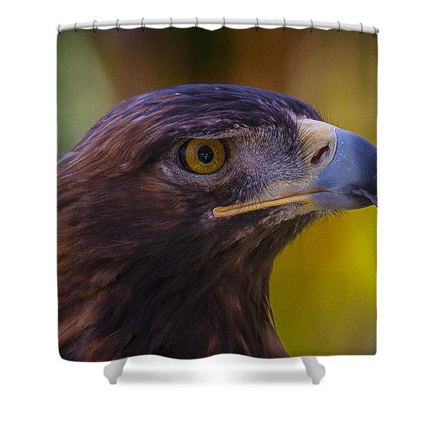 Beautiful Golden Eagle Shower Curtain