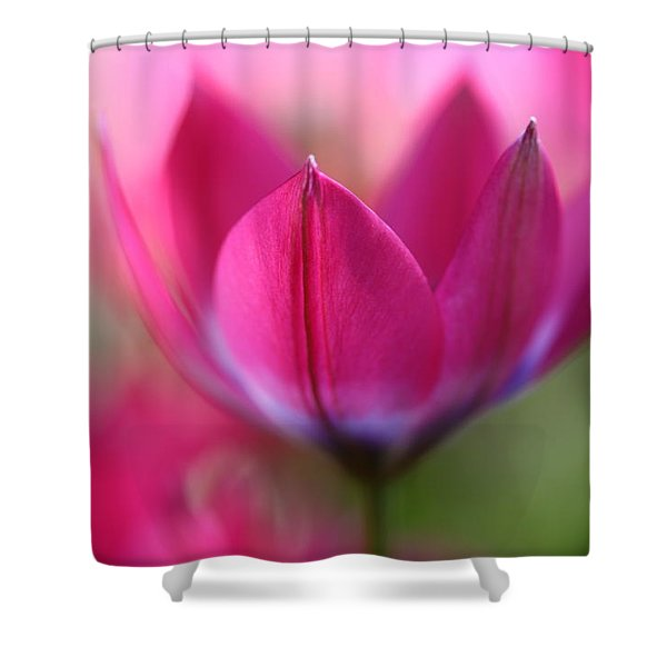 Beautiful Pink Shower Curtain