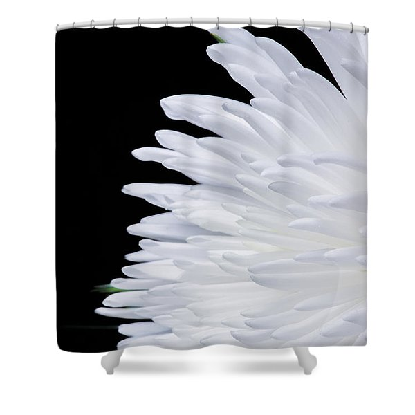 Beauty In Contrast Shower Curtain