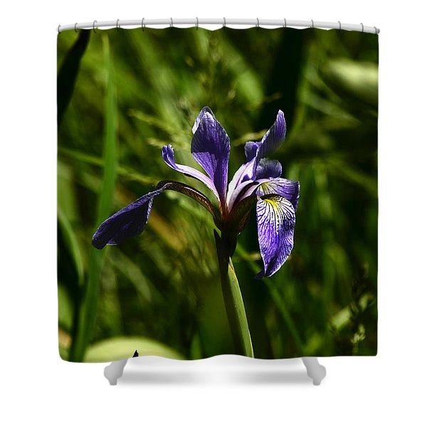 Beauty In The Grass Shower Curtain