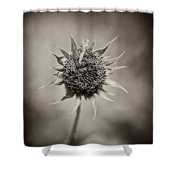 Beauty Of Loneliness Shower Curtain