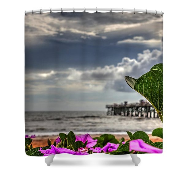 Beautyfulness Shower Curtain
