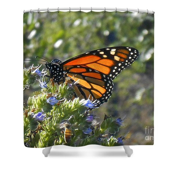 Bee And Monarch  Shower Curtain